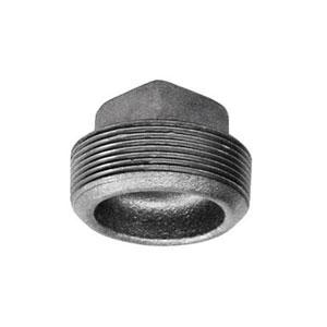Galvanized Pipe Plugs